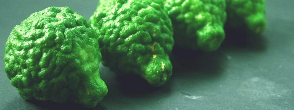 Bergamotto aroma fragrante, simbolo della flessibilità